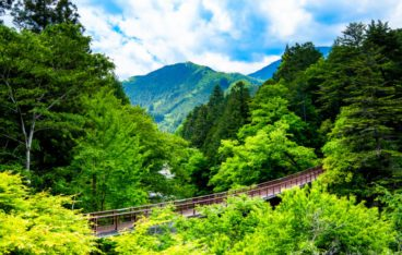 東京都あきる野市のおすすめ片づけ代行業者ランキング|料金相場と安く利用するコツ