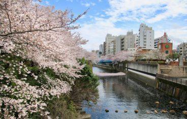 東京都目黒区のスタッフ対応や料金がおすすめの不用品回収5業者はこちら!