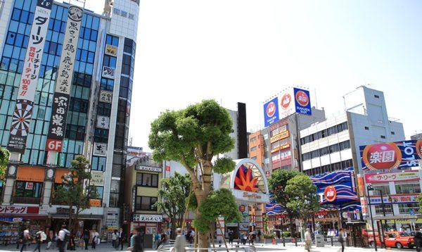 東京都大田区の粗大ゴミの出し方/粗大ゴミ回収で早く安く処分する方法