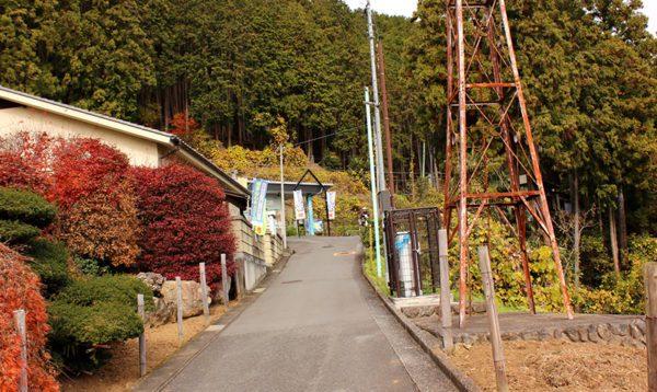 東京都青梅市の粗大ゴミの出し方/粗大ゴミ回収で早く安く処分する方法