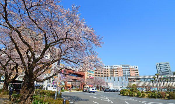 東京都国立市の不用品回収/即日対応の格安業者/口コミ高評価