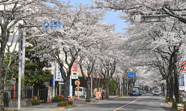東京都武蔵野市の出し方/粗大ゴミ回収で早く安く処分する方法