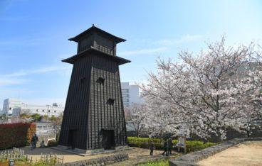 江戸川区のおすすめゴミ回収業者ランキング|料金相場と安く利用するコツ