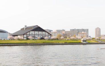 東京都荒川区のおすすめ片づけ代行業者ランキング|料金相場と安く利用するコツ