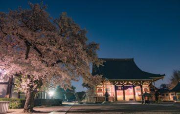 東京都大田区のおすすめ片づけ代行業者ランキング|料金相場と安く利用するコツ