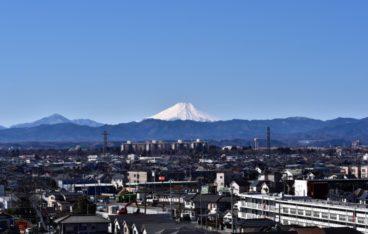 武蔵村山市のおすすめ部屋片づけ代行業者ランキング 料金相場と安く利用するコツ