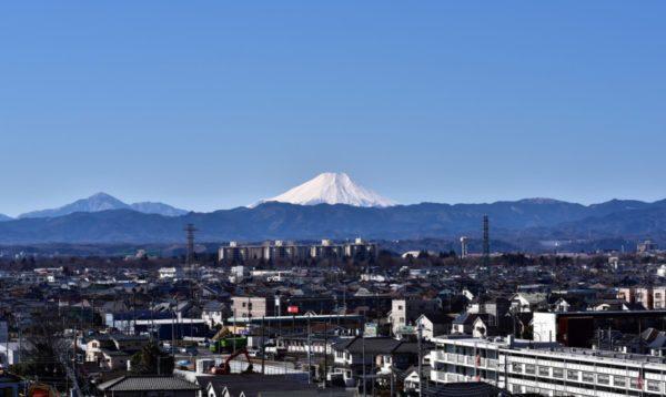 武蔵村山市のおすすめ部屋片づけ代行業者ランキング|料金相場と安く利用するコツ