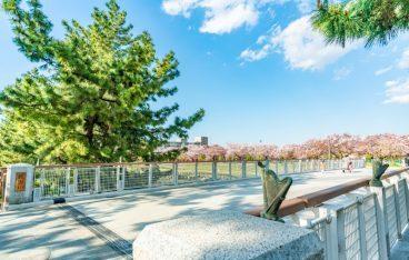 さいたま市でおすすめの廃品回収業者人気ランキング10選